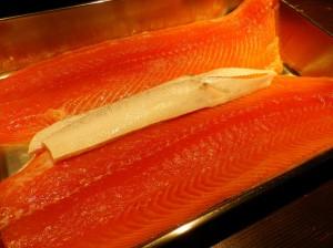 saumon-1